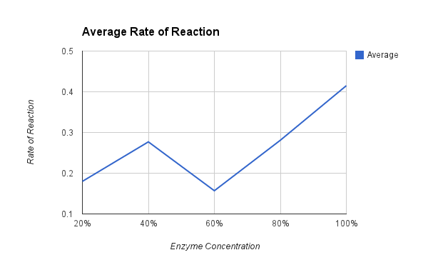 rate of reaction vs enzyme concentration essay Essays on the effect of enzyme concentration on reaction rate on the effect of enzyme concentration on reaction rate the effect of enzyme concentration on.