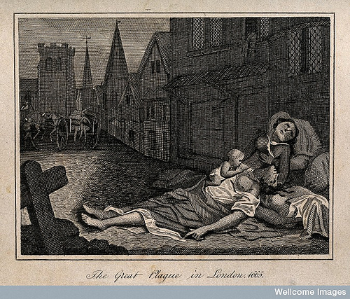 contrast and comparison on plague epidemic This article will compare the two forms of pneumonic and bubonic plague pneumonic plague is a severe type of lung infection and is more virulent than bubonic plague however, bubonic plague may lead to pneumonic plague.