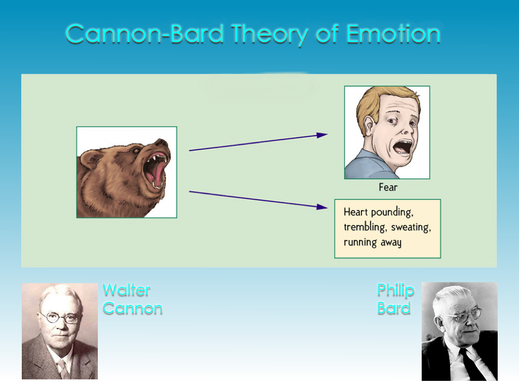 emotion and its theories Lecture 3: theories of emotion csci 534 – appraisal theories emphasize cognitive antecedents of emotion – discrete emotion theories emphasize physiological.