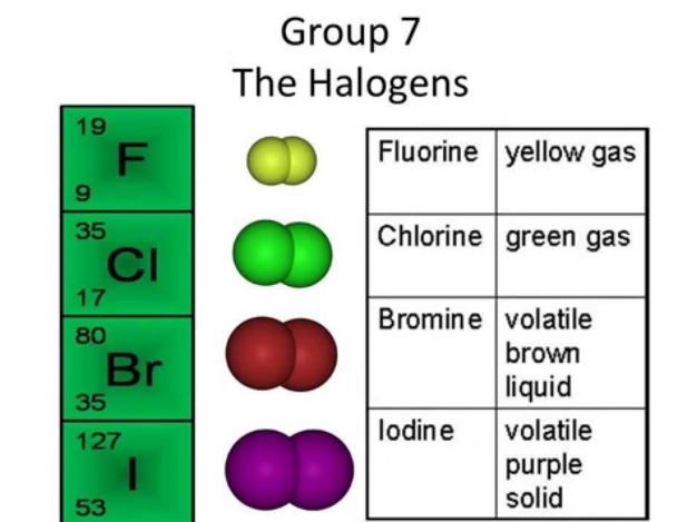 Group 7 Of The Periodic Table The Halogens
