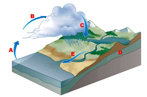 Jaiden gillespie water cycle diagram thinglink ccuart Gallery