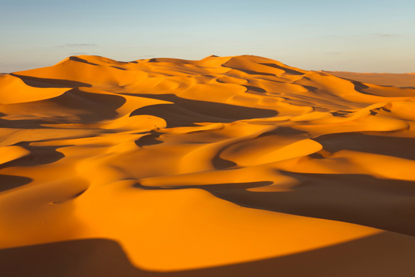 how to find food and water in the sahara desert