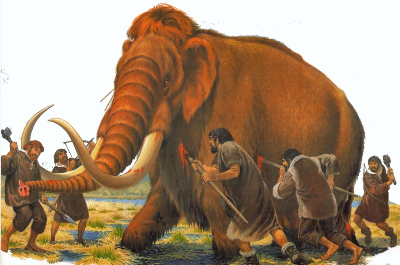 Ľ uomo di neanderthal