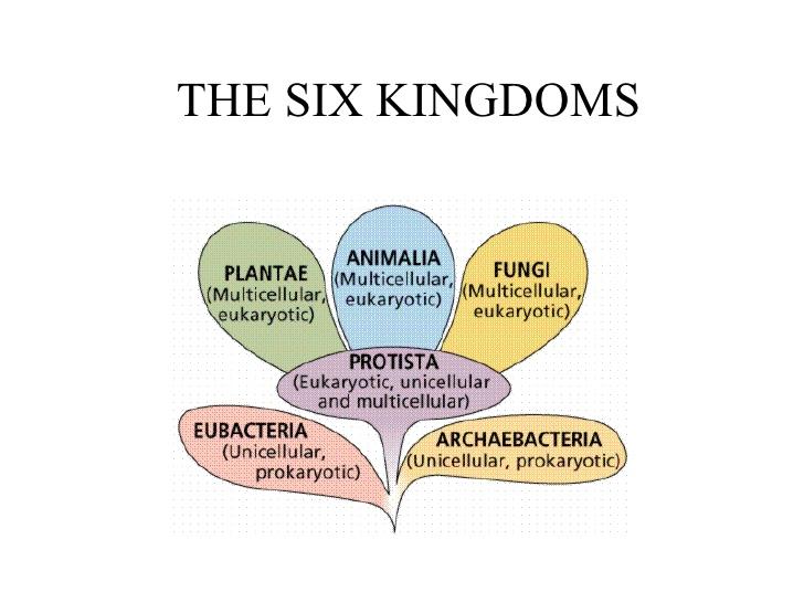 The Six Kingdoms ThingLink – Six Kingdoms Worksheet