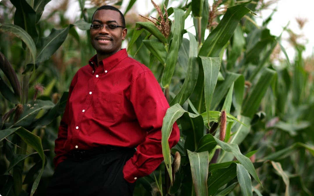 thesis on agricultural economics in nigeria Pmb 5454, ado-ekiti, ekiti-state, nigeria introduction agricultural economics and extension programme is an aspect of social science courses in the field of agriculture which prepares and trains individual as an expert or specialist that manage agricultural business using economic principles.