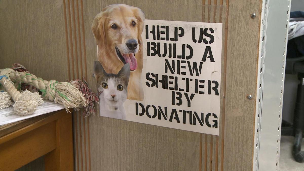 working at animal shelter experience Eric perez 545 emily drive charlotte, sc 28202 (333)-919-7397 eperez@emailaddresscom job objective obtain work as animal shelter.