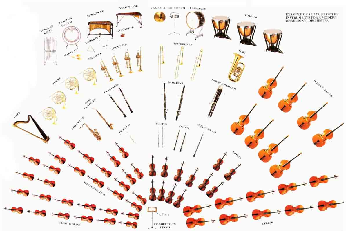 THE INSTRUMENTS OF THE ORCHESTRA - ThingLink