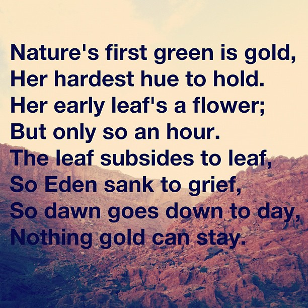 poetry analysis nothing gold can stay by robert frost For analysis of poetry t title the title nothing gold can stay means nothing can stay forever and nothing good ever last.