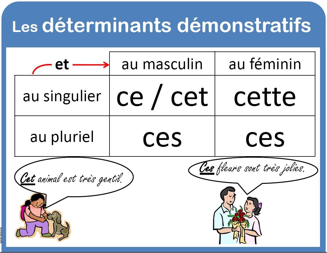 Resultado de imagem para les determinants démonstratifs exercices