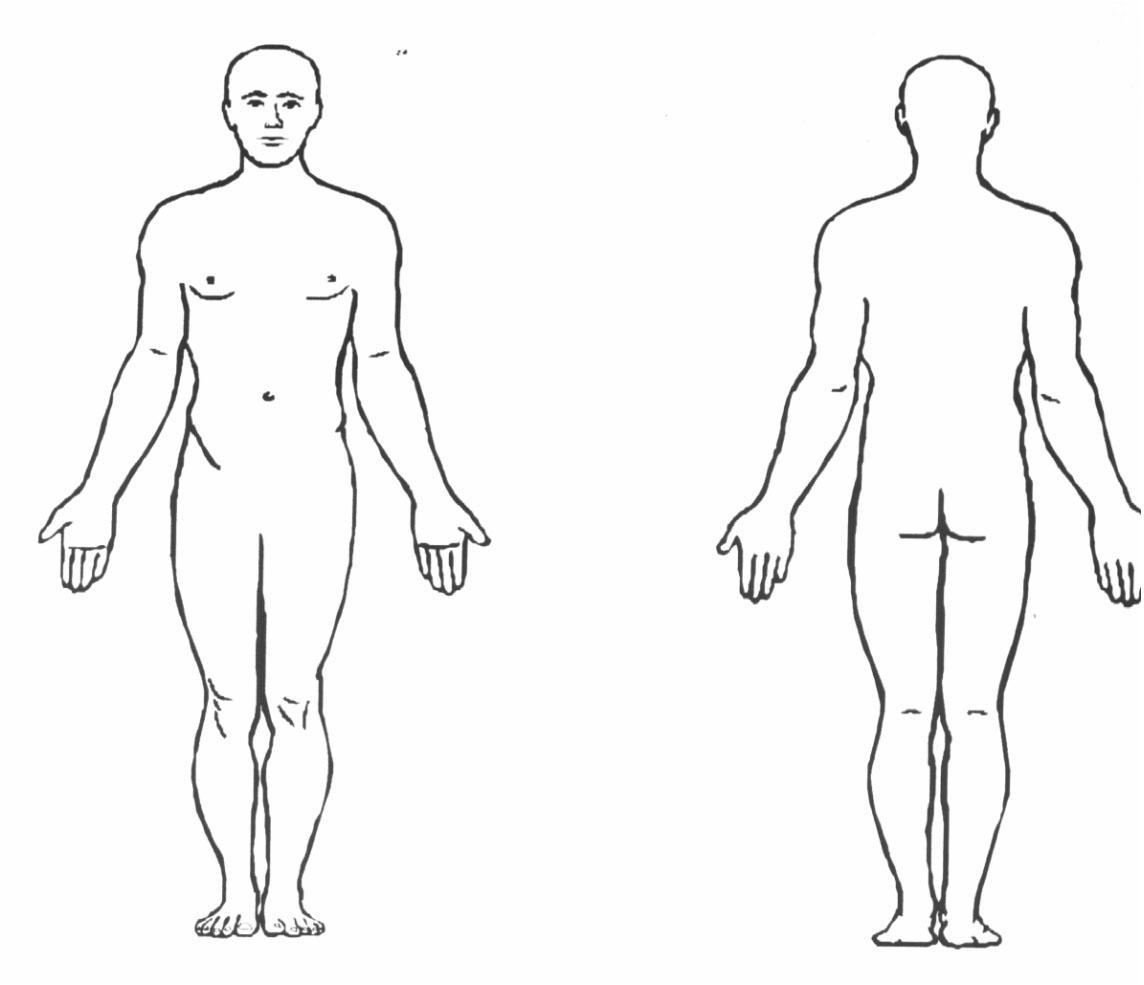 Body Regions Thinglink Thinglink
