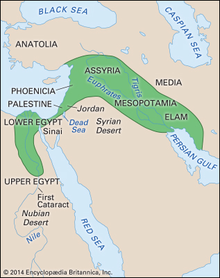 the importance of the fertile crescent in the history of farming A new site containing well-preserved grain reveals that agriculture emerged in multiple regions throughout the fertile crescent.
