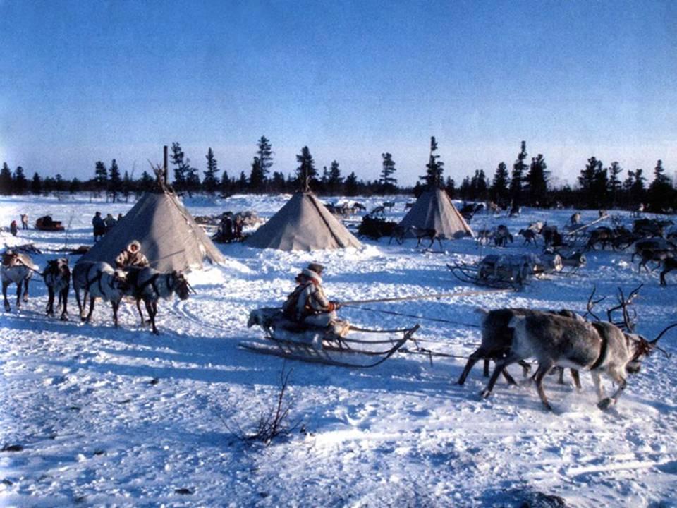 знакомство с жизнью народов севера