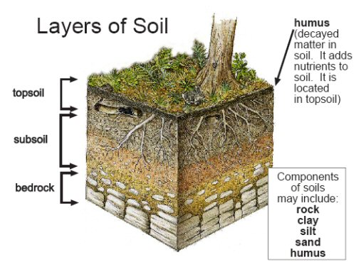 Layers Of Soil For Kids All About Soil Soils 4 Kids Soil Layers – Layers of Soil Worksheet