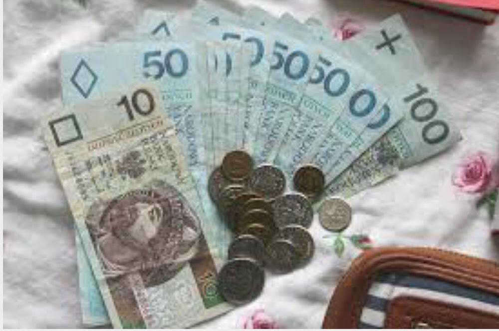 puolan rahayksikkö 2015