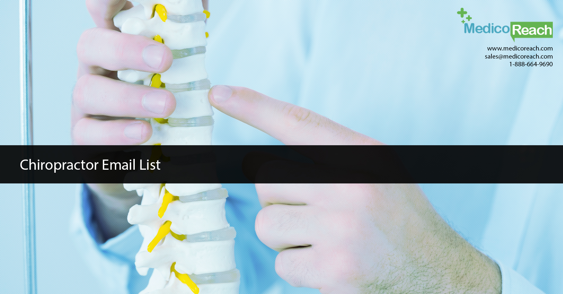 Get Chiropractor Database and Email List of Chiropractic