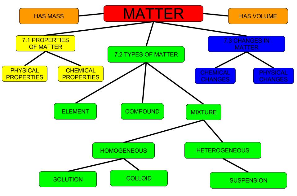 Science Ch 7 Concept Map